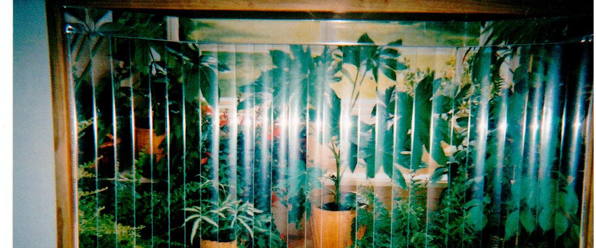 muralslide